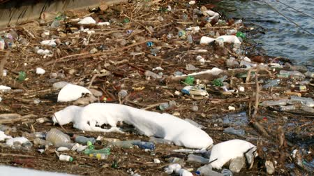 contaminação : Garbage in the river, pollution, ecology Vídeos