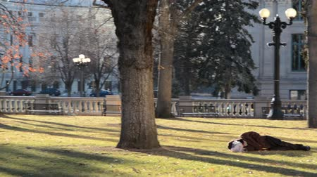 homeless : Pan across urban park with homeless man sleeping on grass