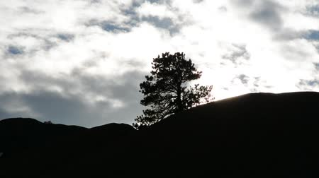 montanhas rochosas : Time lapse of clouds moving past a silhouetted tree