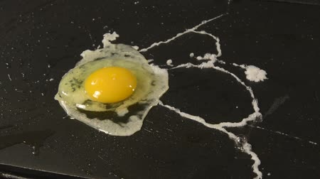 fried : An egg landing on a hot grill and frying