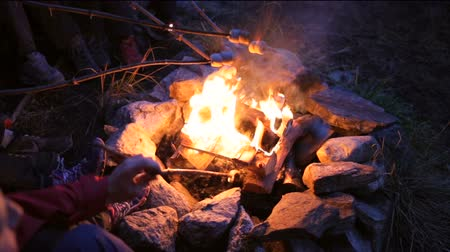 şenlik ateşi : campfire, norway Stok Video
