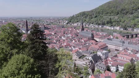 que vale a pena : Heidelberg aerial, cityscape Stock Footage