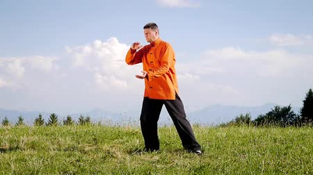 chi : Man doing Qi Gong outdoor