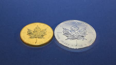Two Bullion Coins, Gold and Silver Full Ounces