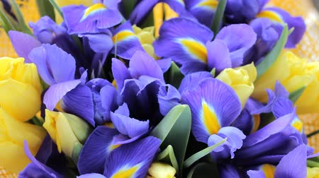 Beautiful bouquet of irises with tulips
