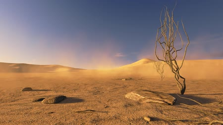 дюна : Sunset in a desert with dead trees and sand blowing