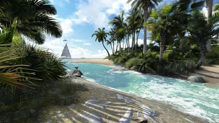 kimse :  Sandy  beach with palmtrees and sailing boat Stok Video