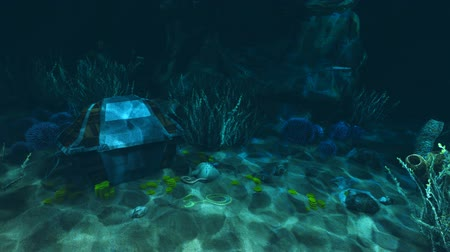 tesouro : Underwater treasure hunt 1 Stock Footage
