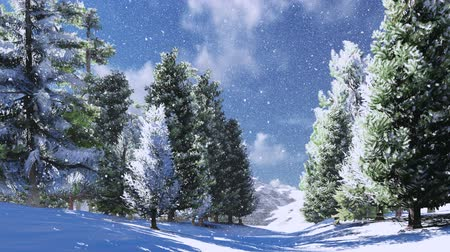 крытый : Snowy pine wood in the mountains