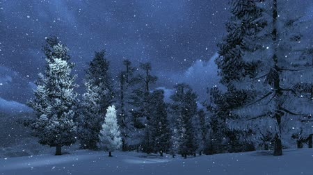 hóvihar : Snowbound pinewood and snowfall in the mountains at night Stock mozgókép