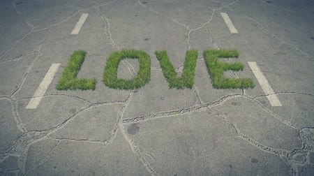 irreal : Love text made from fresh grass on the roadway