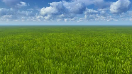 horizont : Motion to horizon through green grass Stock mozgókép