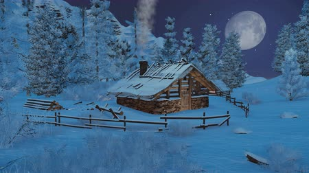 tájak : Cozy little hut and snowy fir trees high in mountains at snowfall night