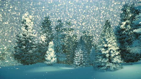 tájak : Dreamlike winter scenery. Snowy spruce forest at snowfall night