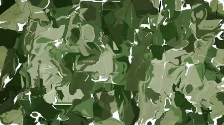 encanecido : Abstract green camouflage background