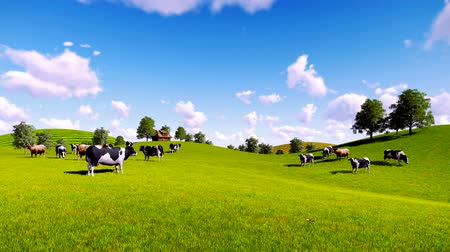 otlama : Rural scenery with a herd of cows grazing on the green meadows