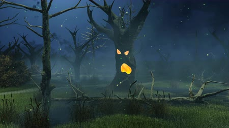 sel : Mystic firefly lights flying around fantastic spooky tree on a creepy swamp at dark misty night. Cinemagraph style animation. Stok Video