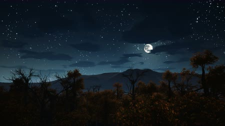 starlit : Flight over gloomy mystical autumn forest with spooky dead trees at night. Halloween background 3D animation.