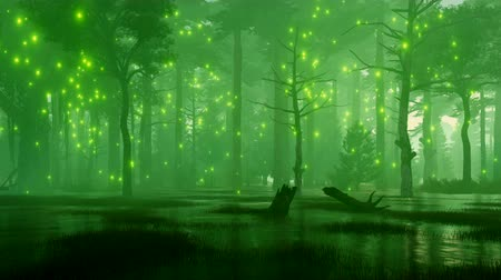 vila : Dreamlike woodland scenery with mystic firefly lights flying over a spooky swamp in a dark mysterious night forest