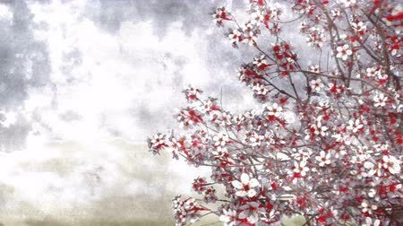японский рисунок : Hand painted ink or watercolor style japanese sakura cherry tree in full blossom on a blurred background. Decorative 3D animation.