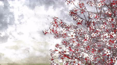 японский рисунок : Lush blooming japanese sakura cherry tree in hand painted ink or watercolor style on a blurred background. Decorative grunge 3D animation.