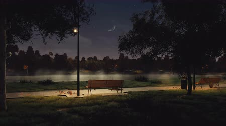 lakeshore : Empty bench in city park at dark autumn night