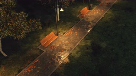 sokak lâmbası direği : Top view of park walkway lit by street lamps with empty benches, autumn trees and fallen leaves Stok Video