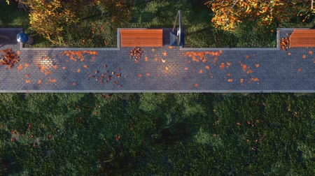 autumnal : Walkway with empty benches in autumn park top view Stock Footage