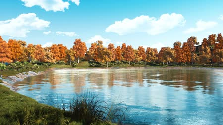 lakeshore : Calm autumn day on a shore of a scenic forest lake or pond