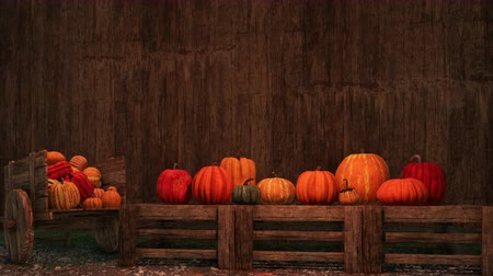 autumnal : Colorful pumpkins against dark wooden background