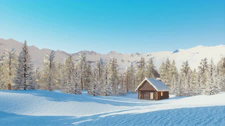 snow covered spruce : Snow covered solitary mountain cabin at winter day Stock Footage