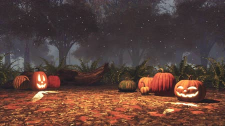 Halloween pumpkins and magic lights at night forest Dostupné videozáznamy