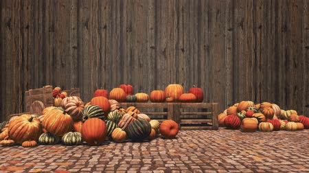 Autumn harvest of pumpkins on wooden background with copy space
