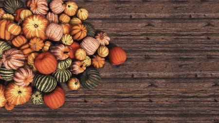 Autumn pumpkins on wooden background with copy space top view 3D animation
