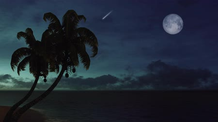 Coconut palm tree silhouettes against dark night sky with falling stars and big full moon on background