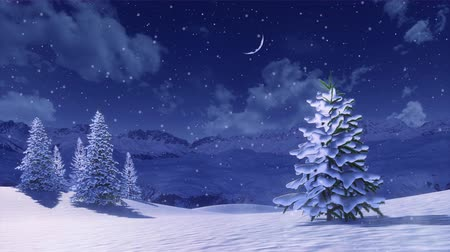 Peaceful winter scenery with snow covered fir tree high in snowy mountains at winter night during snowfall. Decorative 3D animation for Xmas or New Year background in cinemagraph style. Dostupné videozáznamy