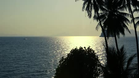 Beautiful Ocean view sunrise with palm trees at summer. Thailand, Asia, Andaman sea.