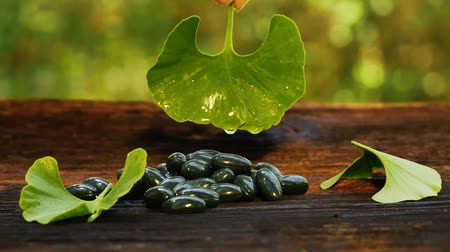 biloba : Water Drop Falling From Ginkgo Leaf In Slow Motion on gel capsules. Wooden table with ginkgo leaves and capsules Stock Footage