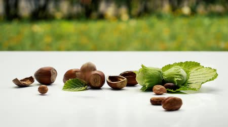 hazelnuts : Peeled Hazellnuts falling on white surface. Healthy food. Hazelnut background, Ripe fresh hazellnuts.