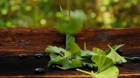 biloba : Ginkgo leaves falling on ginkgo gel capsules on wooden table. Nutritional supplement.