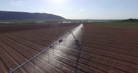 irrigação : Aerial view of corn fields being irrigated with centre pivot system