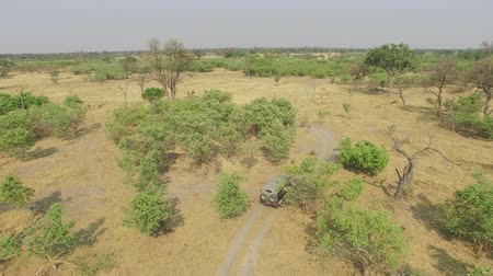 krzak : Aerial shot of safari car driving through the bush