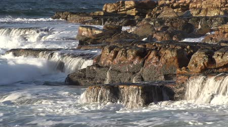holiday makers : Ocean waves crashing on seashore rocks, Cape Town,South Africa