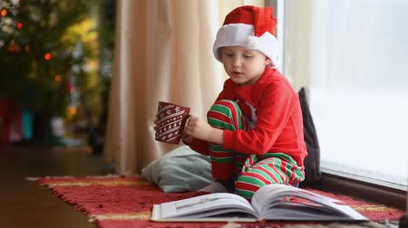 Little boy reading a book and drinking hot cocoa in decorated cozy living room. Happy kid on Christmas time. Activity for children on winter holidays