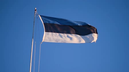 společenství : Close-up video of Estonian flag waving in the blue sky