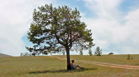 field study : Girl uses a tablet, sitting under a tree in a field, landscape
