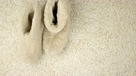 тапки : Slippers are moving along the carpet. Comfort
