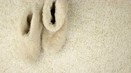 flâmula : Slippers are moving along the carpet. Home