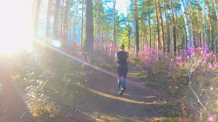 rhododendron : Girl runs along a forest path in a sunny day, among the trees and pink flowers of rhododendron, and between the woods the sun shines. Walking in the forest Stock Footage