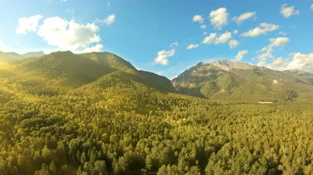 takes : Aerial shot in mountains over green trees. Drone rise up above the forest at sunset. Beautiful landscape: mountains, woodland, sun rays and blue sky with white clouds. Yellow sun flare Stock Footage
